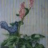 Hahn, Tiere, Gemüse, Pflanzen