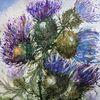 Highlands, Pflanzen, Schottland, Blumen