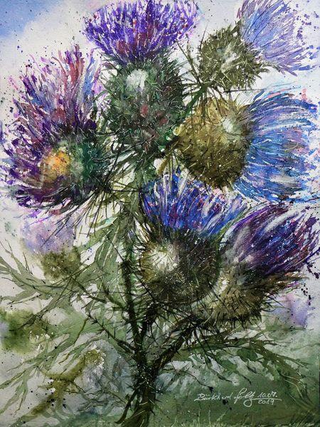 Aquarellmalerei, Distel, Highlands, Pflanzen, Schottland, Blumen