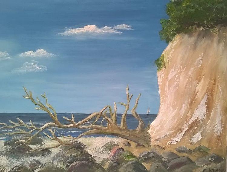 Ostsee, Strandgut, Strand, Landschaft, Baum, Wasser