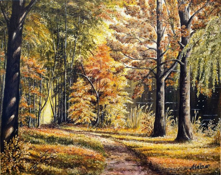Herbst, Sonne, Spaziergang, Bunt, Wald, See
