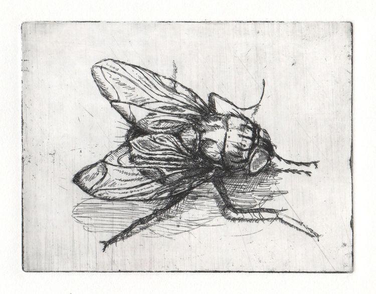 Zeichnung, Warten, Druckgrafik, Fliegen, Dreck, Nahrung