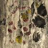 Stillleben, Abstrakt, Farben, Malerei