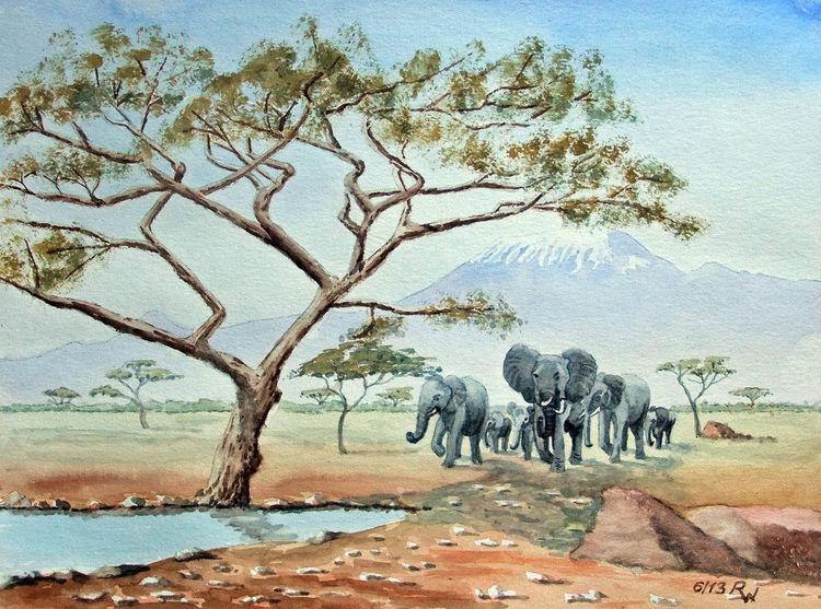 Afrika, Berge, Wasserstelle, Elefant, Kilimandscharo, Steppe