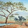 Afrika, Berge, Wasserstelle, Elefant