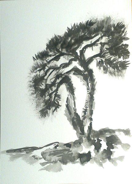 Schwarz, Natur, Tuschmalerei, Weiß, Baum, Zeichnungen landschaft