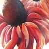 Malerei, Pink, Sonnenhut gemalt, Modern art