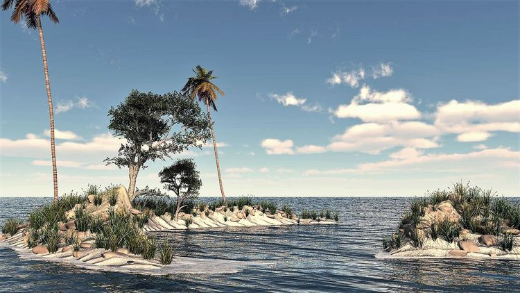 Baum, Natur, Küste, Digitale kunst, Island