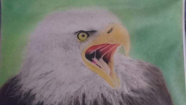 Adler, Pastellmalerei, Malerei, König