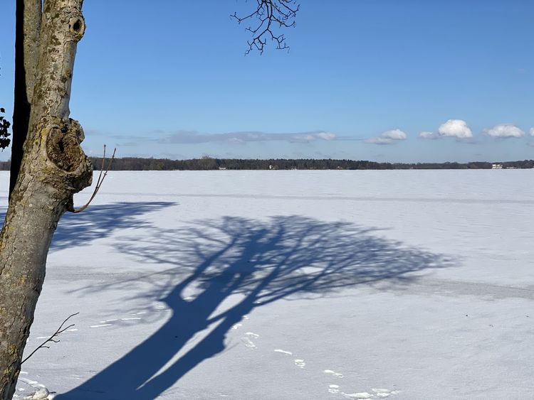 Winter, Schnee, Landschaft, Fotografie