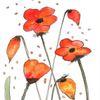 Landschaft malerei, Blumen, Mohnblumen, Rot