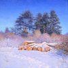 Winter, Impressionismus, Ölmalerei, Schnee