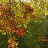 Farben, Text, Licht, Fotografie