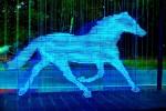 Blau, Fotografie, Farben, Pferde