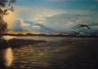 Sonnenuntergang, Müritz, Wasser, Fliegende