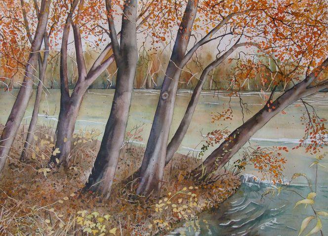 Reuss, Luzern, Blätter, Orange, Wasser, Braun