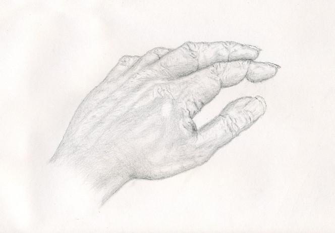 Zeichnung, Studie, Bleistiftzeichnung, Portrait, Hand, Zeichnungen