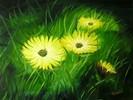 Malerei, Stillleben, Gras