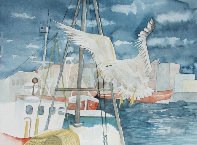 Aquarellmalerei, Möwe, Ostsee, Warnemünde, Boot, Hafen
