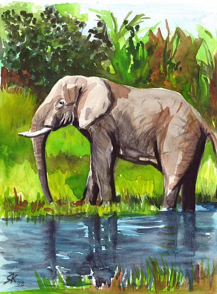 Aquarellmalerei, Grafik, Aquarell, Elefant