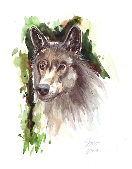 Aquarellmalerei, Grafik, Aquarell, Wolf