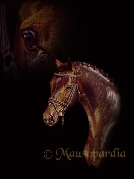 Pferde, Augenblick, Realismus, Detailgenau, Tiere, Jüngling
