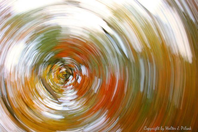 Wischeffekt, Herbst, Abstrakt, Verwischen, Lichtmalerei, Wald