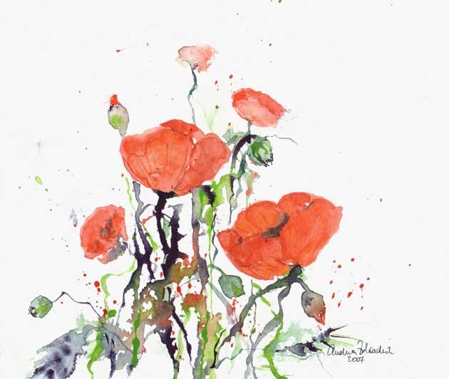 Malerei, Mohnblüten
