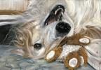Russischer windhund, Malerei, Barsoi, Figural