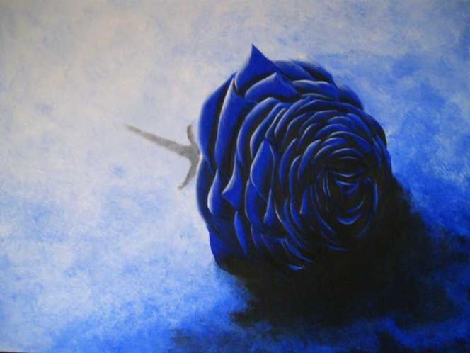 Stillleben, Blau, Schatten, Malerei, Rose