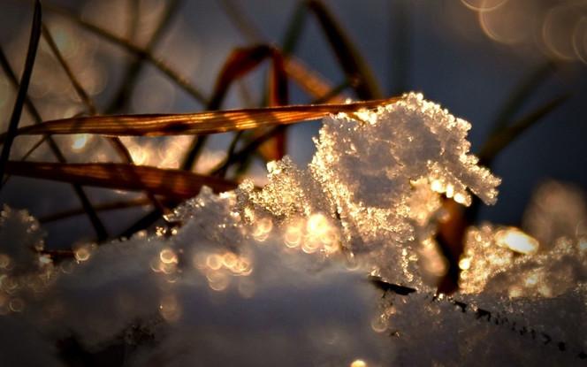 Stillleben, Sonne, Winter, Eis, Fotografie
