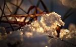 Eis, Winter, Fotografie, Stillleben