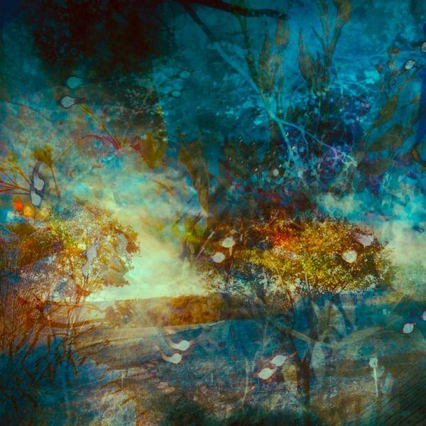 Wiese, Himmelsbilder, Baum, Digitale kunst, Libelle