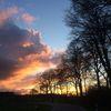Baumgeist, Abendhimmel, Sonne, Fotografie