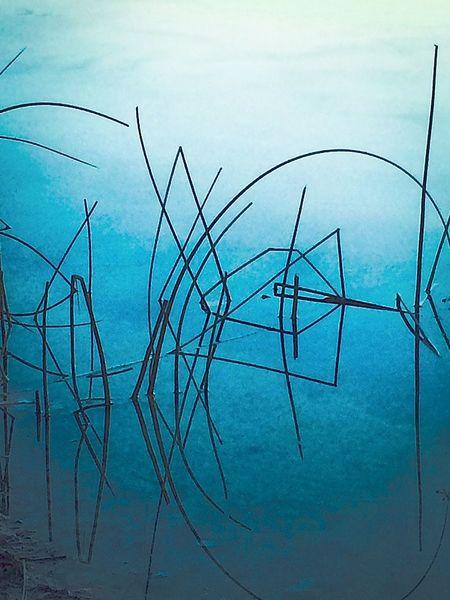 Schilf, Wasser, Fisch, Digitale kunst