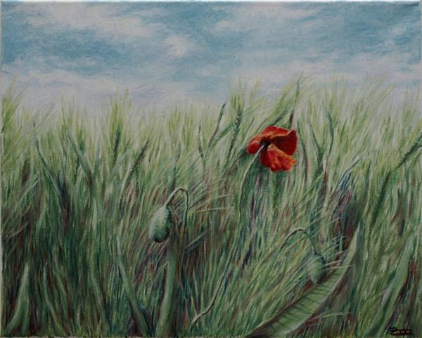 Ölmalerei, Mohn, Wind, Weizen, Malerei,
