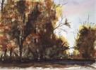 Grafik, Aquarellmalerei, Aquarell, Herbstwald