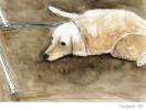 Malerei, Hund, Tiere