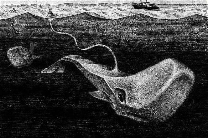 Surreal, Kalender, Tiere, Zeichnung, Wal, Zeichnungen