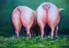 Landschaft, Tiere, Bauernhof, Schwein