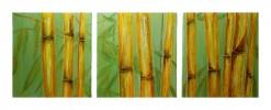 Bambus, Malerei, Figural, Triptychon