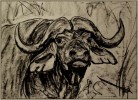Malerei, Zeichnung, Zeichnungen