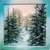 Schnee, Landschaft, Wald, Winter