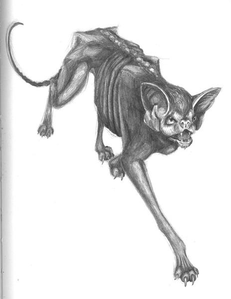 Katze, Illustration, Alb, Fabelwesen, Zeichnung, Traum