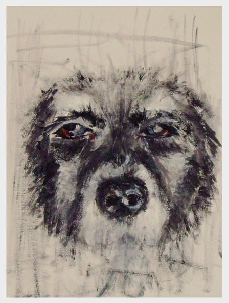 Skizze, Hund, Alt, Malerei, Figural, Tiere