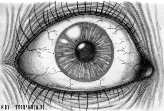 Augen, Zeichnung, Zeichnungen, Portrait,