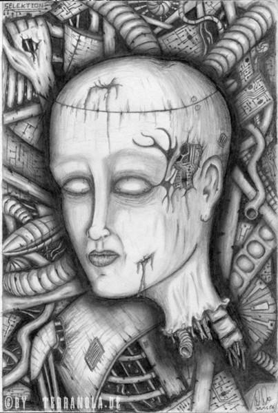 Zeichnung, Selektion, Zeichnungen,