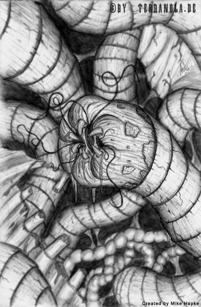 Zeichnung, Wurmfraß, Wormgrup, Zeichnungen,