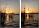 Digital, Harmonie, Landschaft, Sonnenuntergang