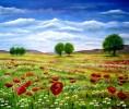 Blumen, Mohn, Malerei, Landschaft